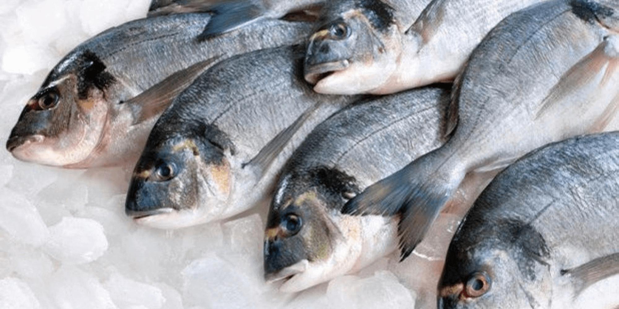 15 juli: Seafood Sunday